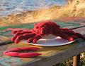 The Deadliest Crab