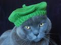 International Cat Hat: France, Le Mieux